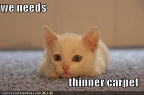 we needs  thinner carpet