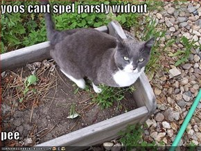 yoos cant spel parsly widout  pee