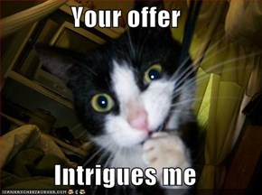 Your offer  Intrigues me