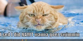 I sed I did NAWT wanna goez swimmin