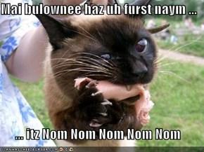Mai bulownee haz uh furst naym ...  ... itz Nom Nom Nom Nom Nom