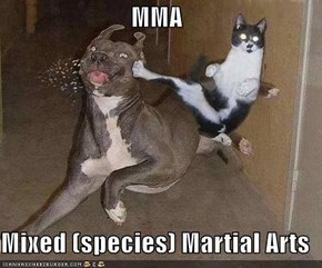 MMA  Mixed (species) Martial Arts