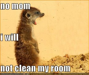 no mom i will not clean my room
