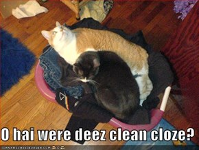 O hai were deez clean cloze?