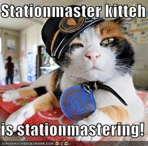 Stationmaster kitteh  is stationmastering!