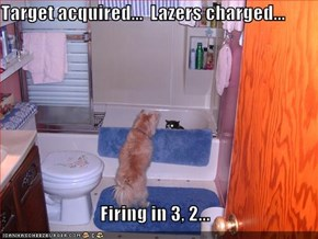 Target acquired...  Lazers charged...  Firing in 3, 2...