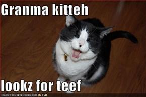 Granma kitteh  lookz for teef