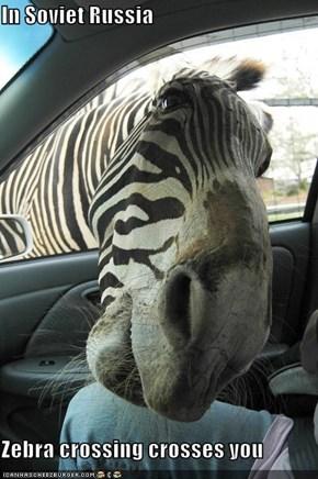 In Soviet Russia  Zebra crossing crosses you
