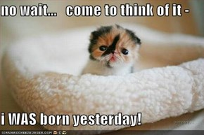 no wait...   come to think of it -   i WAS born yesterday!