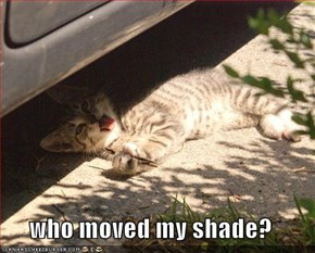 who moved my shade?