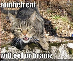 zombeh cat  will eet ur brainz