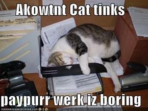 Akowtnt Cat tinks  paypurr werk iz boring