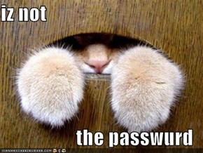iz not  the passwurd