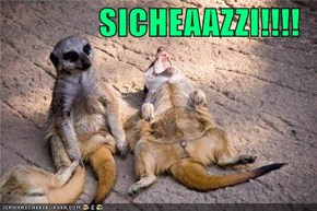 SICHEAAZZI!!!!