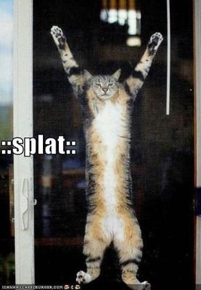 ::splat::