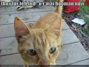 thnx for teh fud.  u r mai hooman now