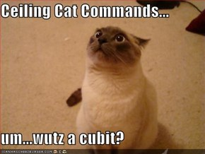Ceiling Cat Commands...  um...wutz a cubit?
