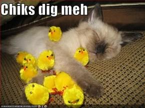 Chiks dig meh