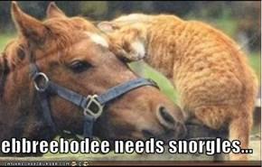 ebbreebodee needs snorgles...