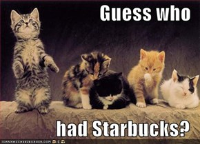 Guess who  had Starbucks?
