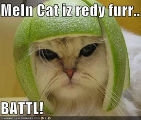 Meln Cat iz redy furr..  BATTL!