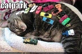 catpark