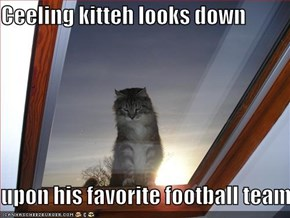 Ceeling kitteh looks down  upon his favorite football team