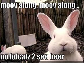 moov along, moov along...  no lolcatz 2 see heer