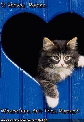 O Romeo, Romeo  Wherefore Art Thou Romeo?
