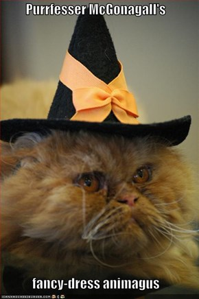 Purrfesser McGonagall's  fancy-dress animagus