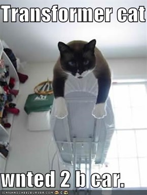Transformer cat  wnted 2 b car.