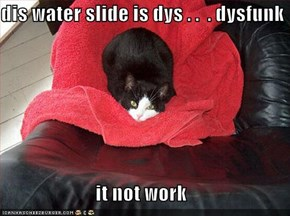 dis water slide is dys . .  . dysfunk  it not work