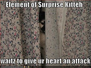 Element of Surprise Kitteh  waitz to give ur heart an attack
