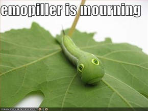 emopiller is mourning