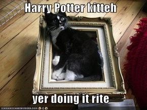 Harry Potter kitteh  yer doing it rite
