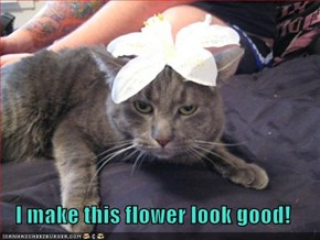 I make this flower look good!