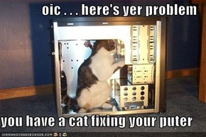 oic . . . here's yer problem  you have a cat fixing your puter