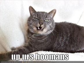 up urs hoomans
