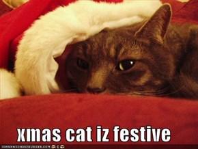 xmas cat iz festive