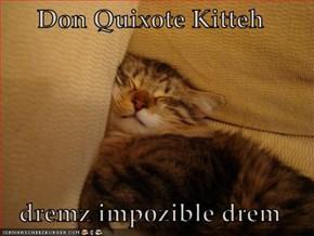 Don Quixote Kitteh  dremz impozible drem