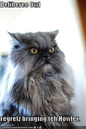 Deliberee Owl  regretz bringing teh Howler.