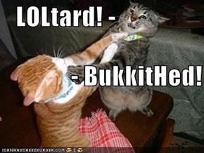 LOLtard! -                - BukkitHed!