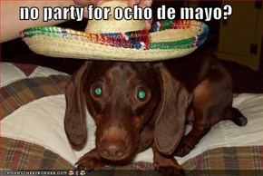 no party for ocho de mayo?