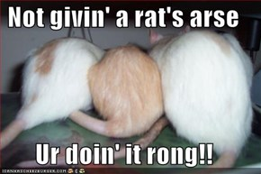 Not givin' a rat's arse  Ur doin' it rong!!