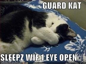 GUARD KAT  SLEEPZ WIF 1 EYE OPEN