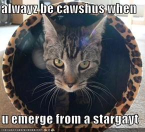 alwayz be cawshus when   u emerge from a stargayt