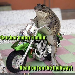 Getcher motor runnin' Head out on the highway!