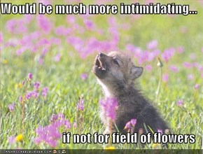 Would be much more intimidating...  if not for field of flowers
