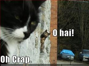 O hai! Oh Crap.