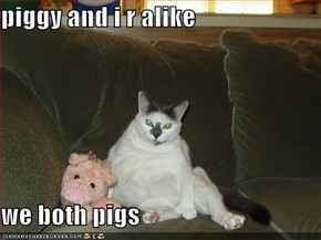piggy and i r alike  we both pigs